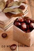 Castañas en bolso del arte sobre fondo oxidado — Foto de Stock