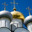 Stock Photo: Domes of Novodevichy Convent, Moscow, Russia