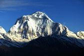 Mount Dhaulagiri 8172m — Stock Photo