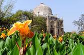 Lodi Gardens, New Delhi, India — Stock Photo