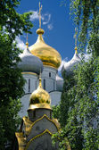Domes of the Novodevichy Convent, Moscow, Russia — Stock Photo