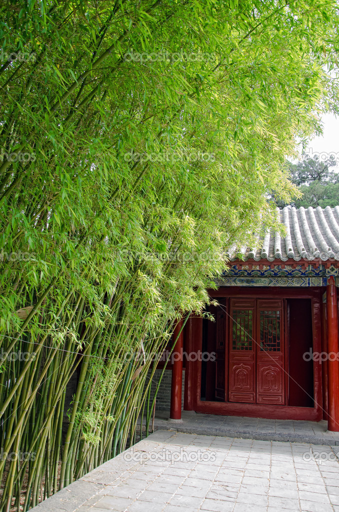 Resultado de imagem para Academia Songyang