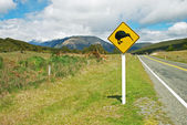 Kiwi sign by the road — Stock Photo