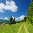 Countryside in Krkonose mountains, Czech republic - Stock Photo