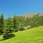 Snezka, the highest Czech mountain (1602m) — Stock Photo #12805909