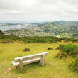 Wellington lookout — Stock Photo