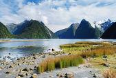 Zatoka Milforda, Nowa Zelandia — Zdjęcie stockowe