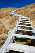 Outdoor steps up the hill — Stock Photo