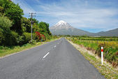 Road to Mt Egmont, New Zealand — Stock Photo