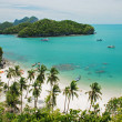 Tropical beach in Ang Thong National Park, Thailand — Stock Photo