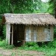 Bamboo house in the jungle — Stock Photo