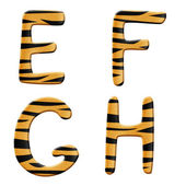 Tiger alphabet part 2 — Stock Photo