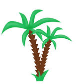 The drawn palm tree — Foto de Stock