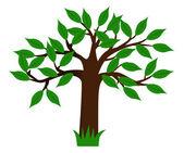 Gröna träd — Stockfoto