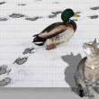 Cat and duck — Stock Photo #19383679