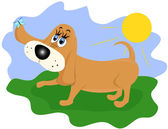 Funny dog — Stock Vector