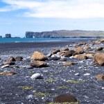 Southern coast of Iceland — Stock Photo #12817285
