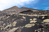 Volcanic landscape, Mount Etna, Sicily — Stock Photo