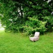 Chair and garden - Stock Photo