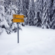 Road sign covered with snow — Stock Photo