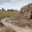 Dimmuborgir, Iceland — Stock Photo #16647341