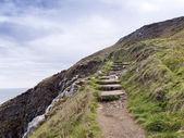 Escadas de pedra da costa, irlanda — Foto Stock