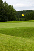 The yellow flag. A golf course. — Stock Photo