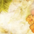 Tropical Background — Stock Photo #29748609