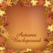 autumn background — Stock Vector #12880101