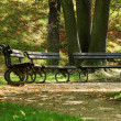 Stock Photo: Lonely benches