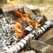 Stock Photo: Fire coals