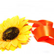Sunflower with a ribbon - Stock Photo
