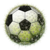 Cactus Soccer Ball — Stock Photo