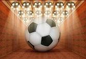 サッカー博物館 — ストック写真