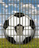 Jailed Soccer Ball — Stock Photo