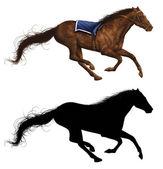 Race Horse — Stock Photo