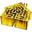 House Maze — Stock Photo #48047083