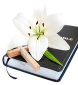 Easter Lily and Bible — Stock Photo