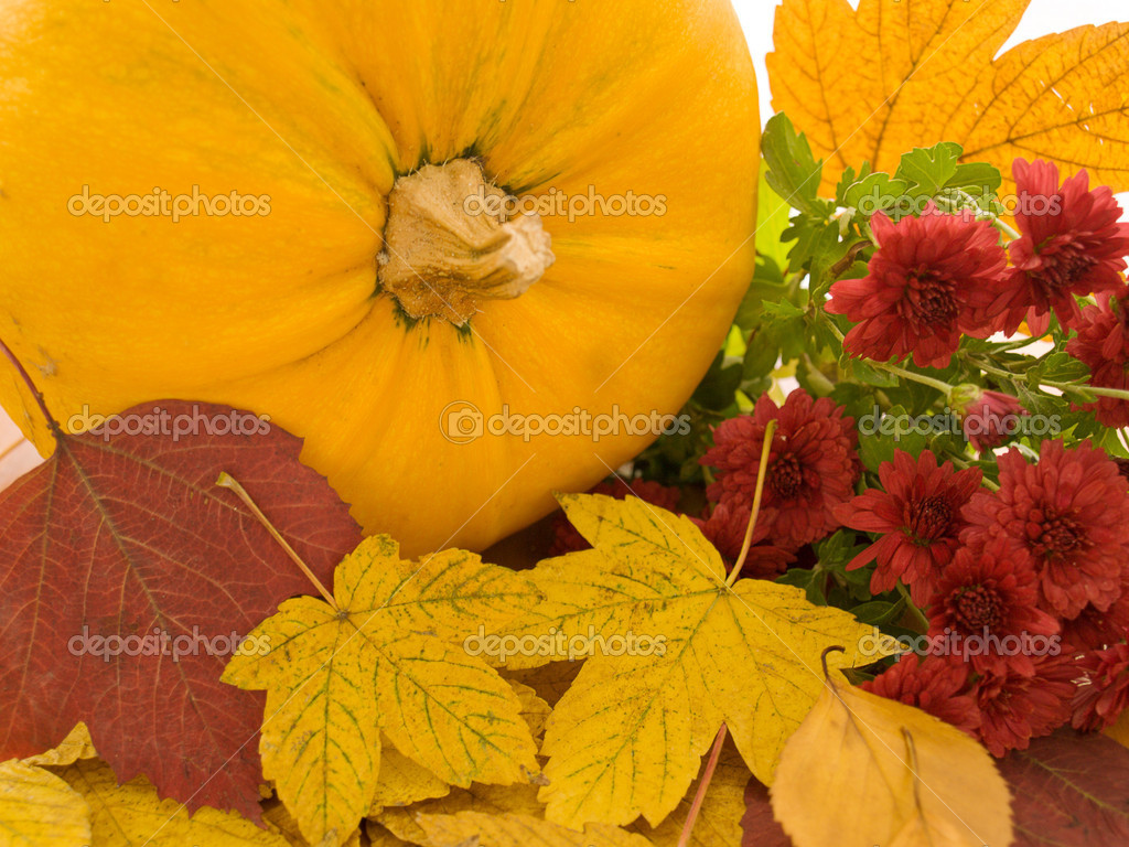 Pumpkin and yellow leaves — Stock Photo #13127200