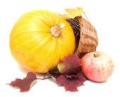 Calabaza, hojas amarillas y manzana — Foto de Stock