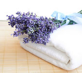 Lavender and towel — Stock Photo