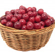 Cherries in a basket — Stock Photo #13288292