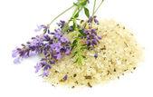 Herbal sea salt and lavender — Stock Photo
