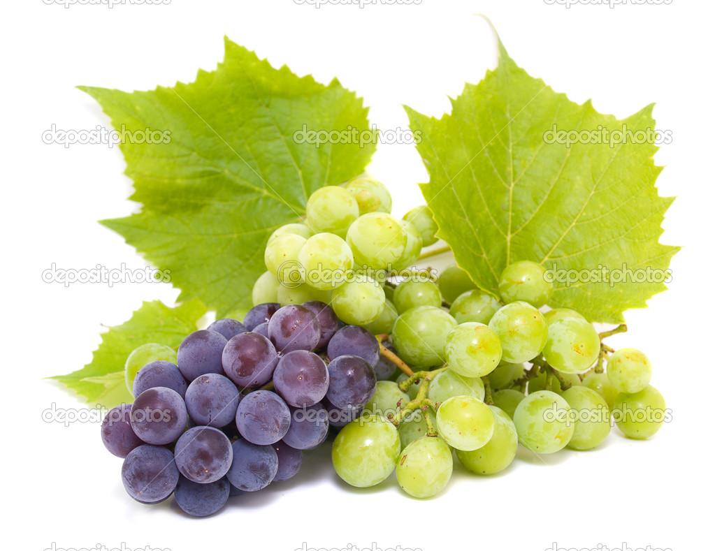 Bilder Blaue Weintrauben ~ Herunterladen  Blaue und weiße TraubenClustern mit Blättern