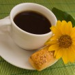 Cup of cofee — Stock Photo #13320932