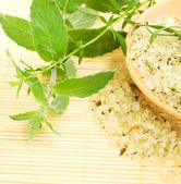 Herbal sea salt — Stock Photo