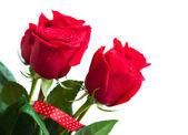 Kytice červených růží — Stock fotografie