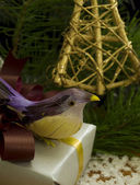 Christmas decoration with bird — Stock Photo