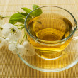 Tea and spring blossom - Stock Photo