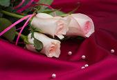 玫瑰缎背景上 — 图库照片